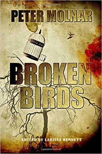 Broken Birds Cover